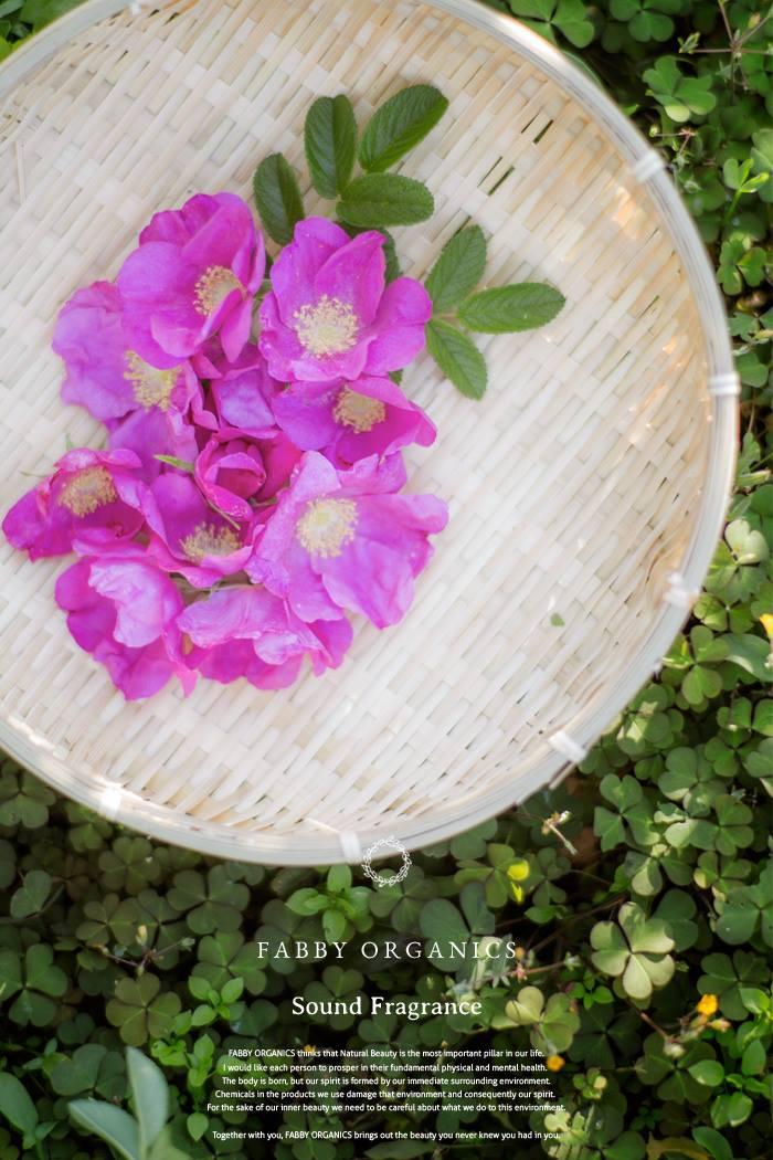 ハマナスローズの花びら