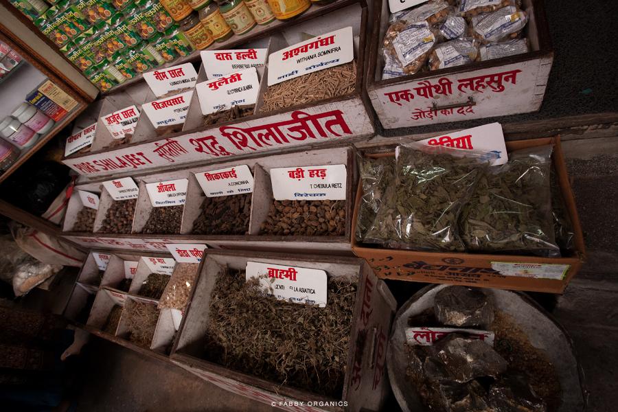 Henna Journey Across INDIA ヘナ・インドへの旅路 ハリドワール モーティーバザール ガンジス川 Mansa Devi Temple マンサーデーヴィー寺院 アーユルベーディック・プランツ シカカイ アムラ リタ アーユルヴェーダ