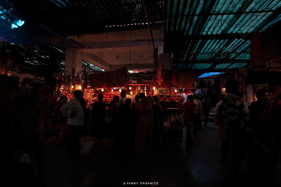 Henna Journey Across INDIA ヘナ・インドへの旅路 ハリドワール モーティーバザール ガンジス川 Mansa Devi Temple マンサーデーヴィー寺院 ティカ