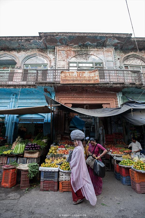 Henna Journey Across INDIA ヘナ・インドへの旅路 ハリドワール モーティーバザール ガンジス川
